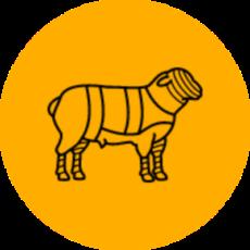 Agneau / Chèvre / Chevreau